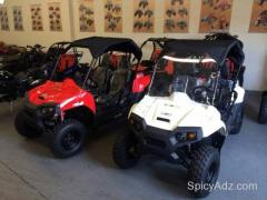 Brand New 150cc Polaris RZR Youth