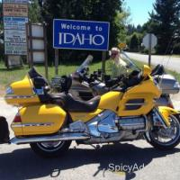 Goldwing 2010 - $16500 (Cullman)