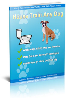 Potty Train Any Dog or Puppy (Pets & Animals - Pet Services)