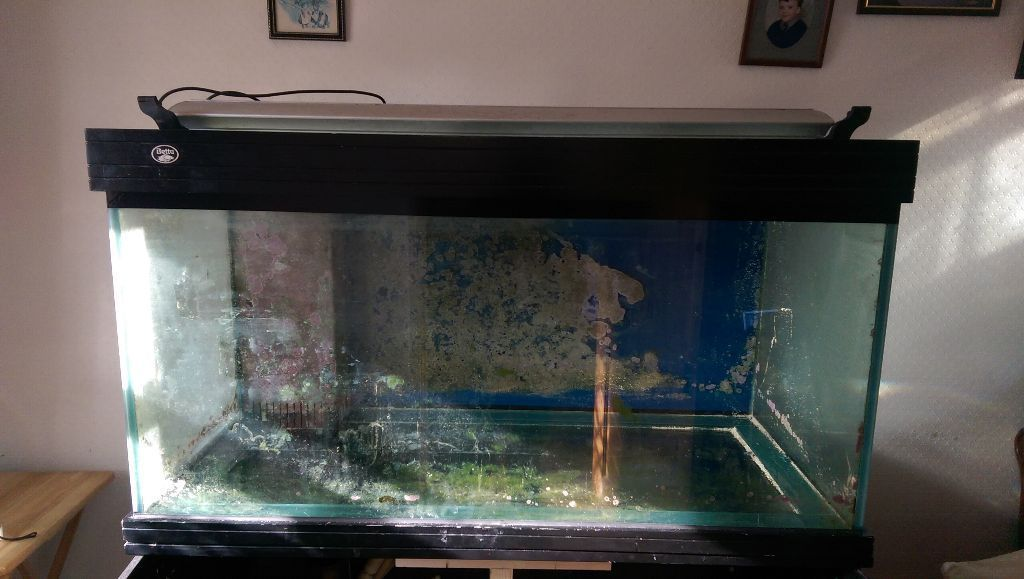 4FT marine aquarium/tank and equipment in 