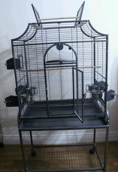 InNeedOf: Large bird cage in  Belfast City Centre
