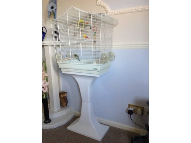 Birdcage in Darlington