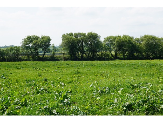 Freehold land near bude in Honiton