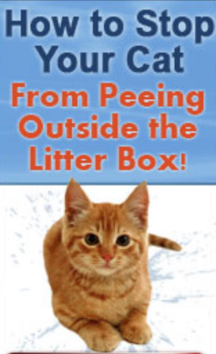 Use THIS and your cat will ALWAYS pee in its litter box (Pets & Animals - Cats)