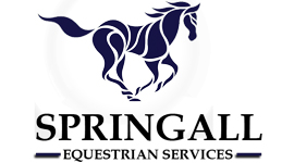 For a trusted horse and pony breaking service in Wiltshire look no further than Springall Equestrian
