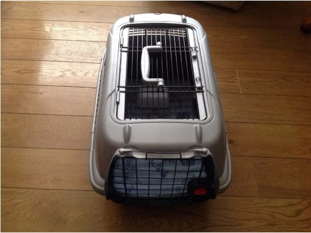 Dog/cat or small animal carrier in Llanelli
