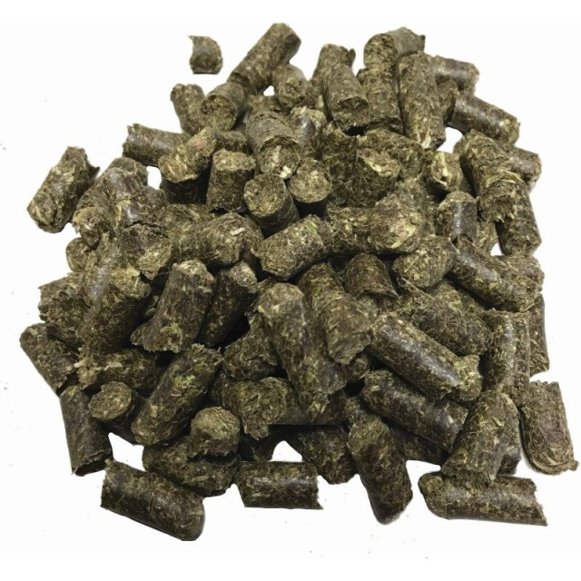 buy organic catnip uk (Pets & Animals - Cats)