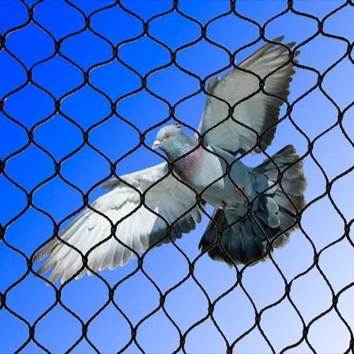 Bird netting (Pets & Animals - Birds)