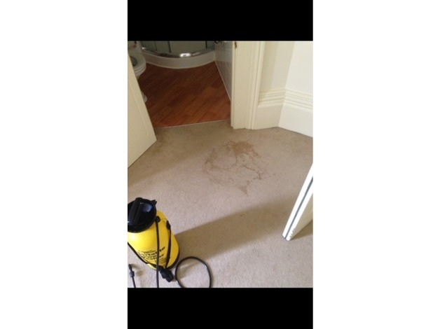 Carpet and upholstery cleaning in Plymouth