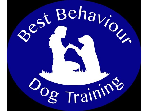 Puppy & Dog Training in Stowmarket