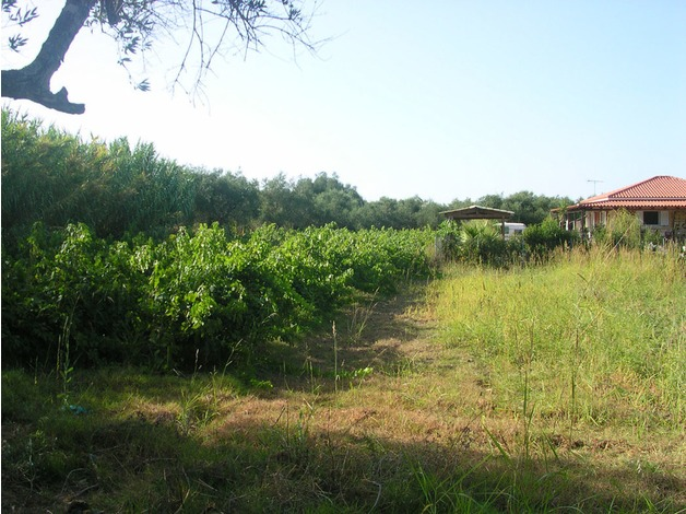 Land in Greece - Laganas - with planning permission - 5 minutes from the beach  in Watford