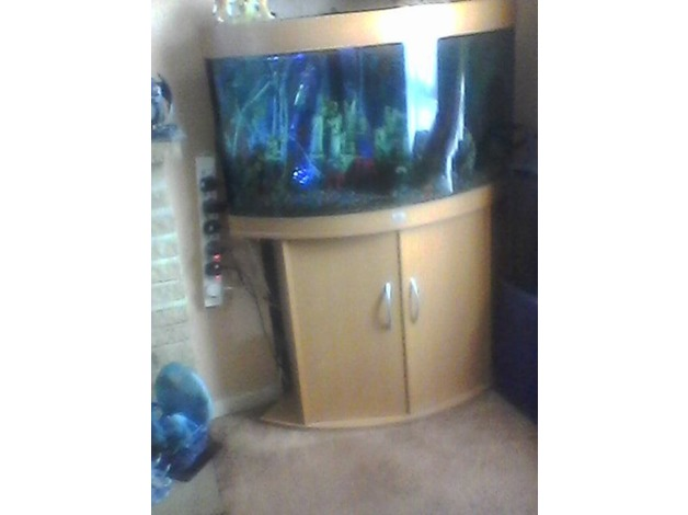 Tropical fish tank with pump in Worthing